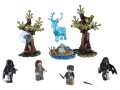 LEGO 75945 Harry Potter